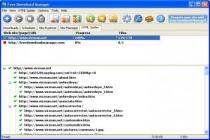 Imagen de Free Download Manager 5.1.19