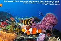Imagen de Beautiful Deep Ocean Screensaver 1.0
