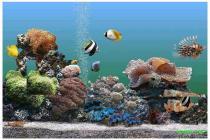 Imagen de Animated 3D Aquarium 1.0